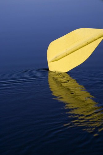 I liked the contrast between the yellow paddle and the blue water.